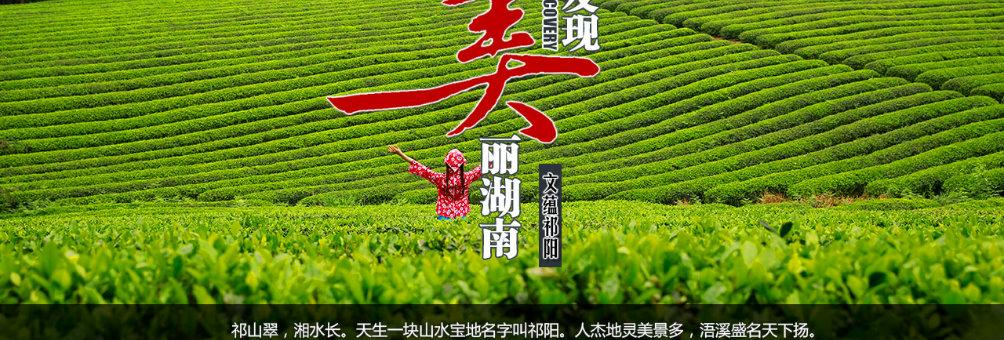 祁阳县肖家茶场