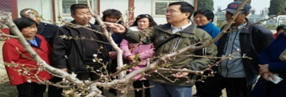 房山区农民优秀培训项目推广工程