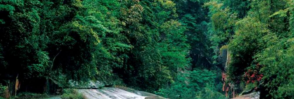 福宝国家级森林公园