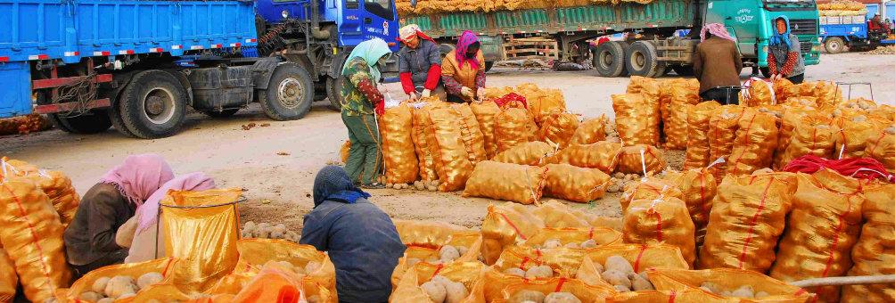中国马铃薯之乡