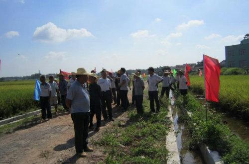 加强农技人员能力建设,促进农业增产增收