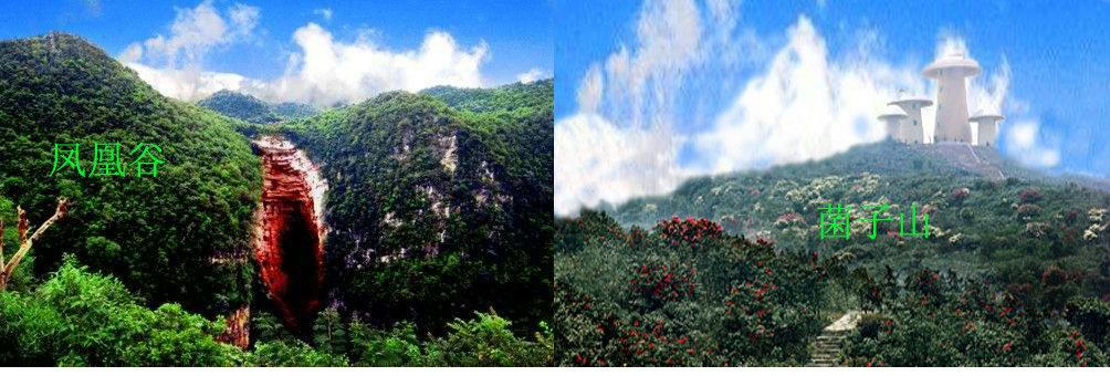 师宗绚丽多彩的自然景观