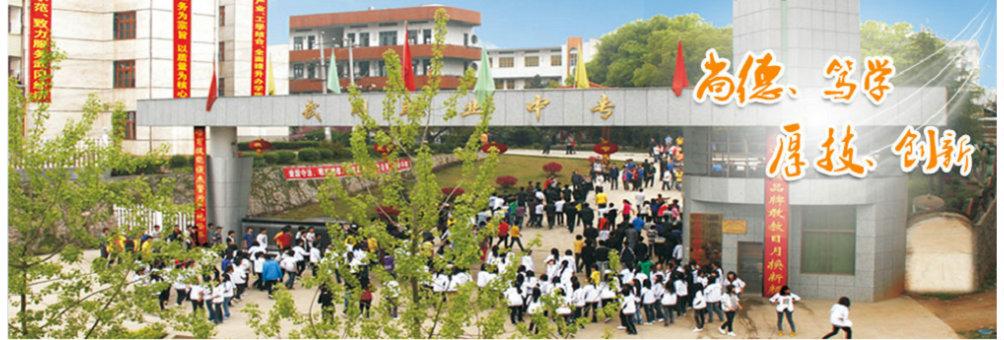 武冈市职业中专学校