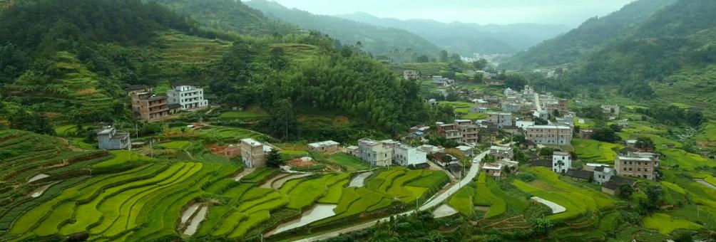 构建新型农业产业链 发展现代农业(贵子秋风根梯田)