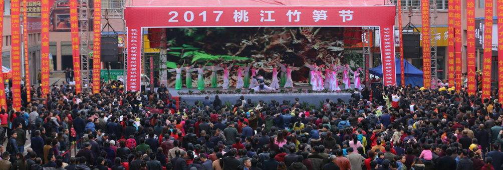 2017桃江竹笋节