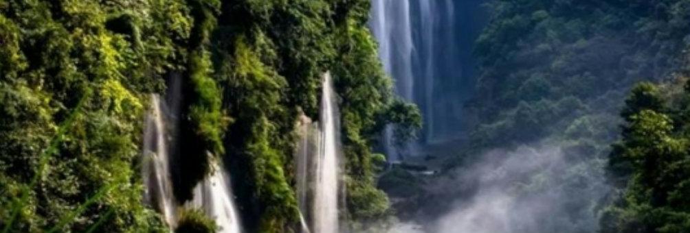 马堡树瀑布群