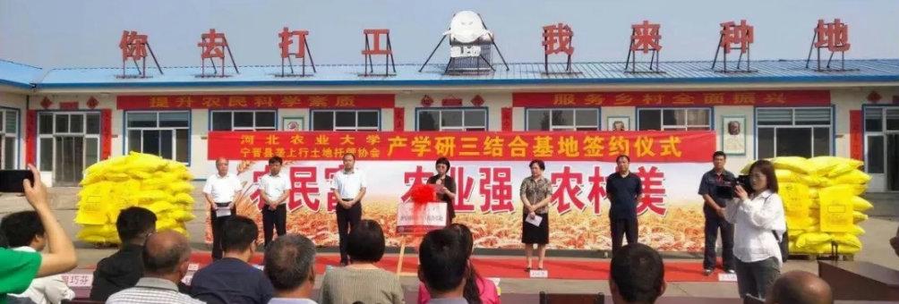 """河北农大、宁晋县垄上行土地托管协会""""产学研""""三结合基地签约挂牌仪式"""