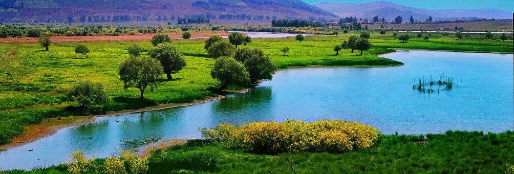 雁鸣湖湿地公园