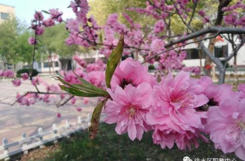 保定市徐水区职业技术教育中心中职教育资助政策
